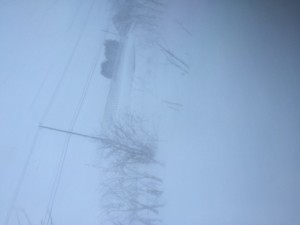 img-11.php